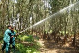 Khu bảo tồn Đất ngập nước Láng Sen chủ động phòng cháy, chữa cháy