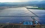 Cụm nhà máy điện mặt trời 330MWP chính thức hòa lưới điện Quốc gia