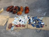Khởi tố 11 bị can liên quan đến vụ nổ súng tại trường gà ở Cà Mau