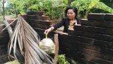 Phường 2, thị xã Kiến Tường: Nỗ lực nâng chất phường văn minh đô thị