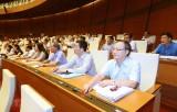Quốc hội giám sát tối cao chuyên đề phòng, chống xâm hại trẻ em