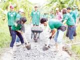 Tuổi trẻ Long An tình nguyện vì cộng đồng