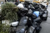 Thải rác nhiều nhất thế giới, Mỹ sẽ bị chôn vùi trong 'núi phế thải'?