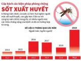 [Infographics] Cấp bách các biện pháp phòng chống sốt xuất huyết
