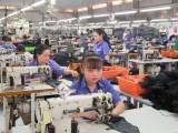 Long An: Các khu công nghiệp có 875 doanh nghiệp hoạt động