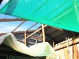 Kiến Tường: Mưa lớn kèm dông lốc làm hư hỏng 3 căn nhà