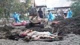 Long An tiêu hủy gần 3.000 con heo nhiễm Dịch tả heo Châu Phi