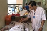 Nghiên cứu vắcxin sốt xuất huyết tại Việt Nam đã hoàn tất