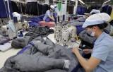 Dệt may Việt Nam: Thành công xuất khẩu, lận đận thị trường trong nước
