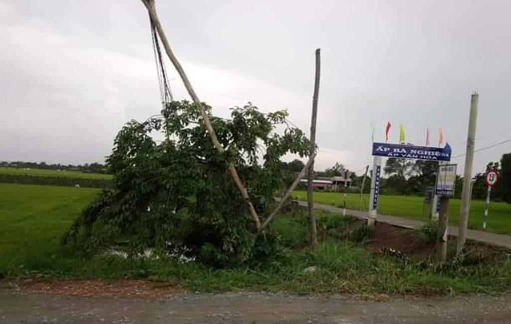 Nhiều cột điện ấp Bà Nghiệm, xã Mỹ Lạc bị ngã đổ do lốc xoáy.