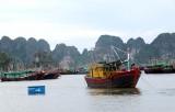 Hải Phòng: Điều động 2 tàu cứu hộ ứng trực bão số 3 tại vịnh Lan Hạ