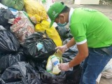 Báo động tác hại từ các loại rác thải thuốc bảo vệ thực vật