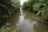 Cần thường xuyên kiểm tra khu vực xả thải tại 2 nhà máy giấy khu vực rạch Cầu Ngang