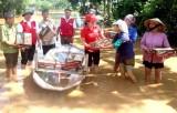Hội Chữ thập đỏ Việt Nam cứu trợ khẩn cấp các tỉnh Tây Nguyên, Nam Bộ