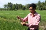 Tân Tây: Quyết tâm giữ vững danh hiệu xã đạt chuẩn nông thôn mới