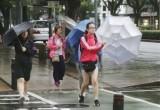 Bão Krosa gây thiệt hại nặng nề tại Nhật Bản, nhiều người thương vong