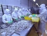 Vietfish 2019 - cầu nối giao thương giữa các doanh nghiệp thủy sản