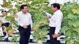 Long An chuyển đổi cây trồng, vật nuôi mạnh mẽ sau 3 năm phát triển nông nghiệp ứng dụng công nghệ cao