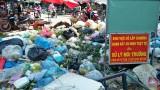Thực trạng xử lý chất thải rắn trên địa bàn tỉnh