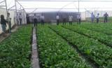 Người tiêu dùng ưa chuộng nông sản sạch