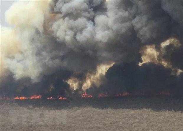 Khói bốc lên từ đám cháy rừng tại San Jose de Chiquitos ở Santa Cruz, Bolivia, ngày 9/9/2019. (Ảnh: AFP/ TTXVN)