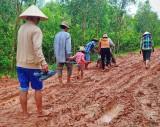 Bình Thành: Đường đê lầy lội, gây khó khăn cho người dân