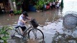 TP.Tân An: Nhiều tuyến đường ngập do triều cường