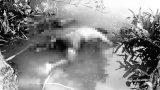 Phát hiện một nam thanh niên chết trên địa bàn xã Tân Tây