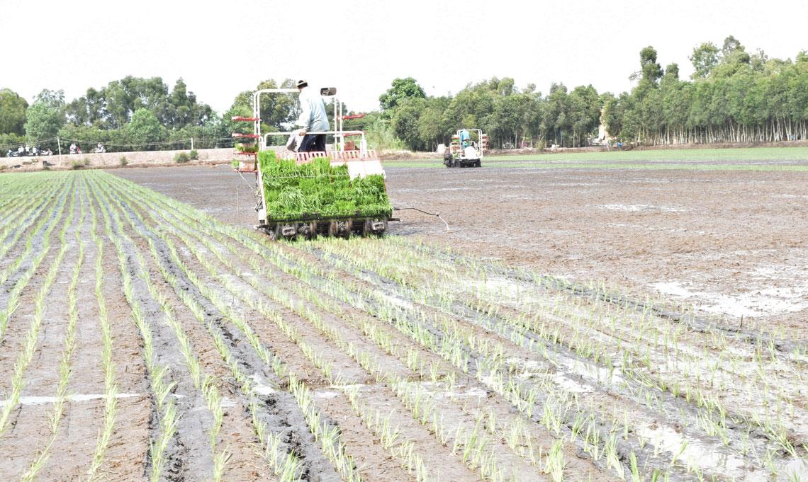 Phát triển nông nghiệp ứng dụng công nghệ cao là hướng đi tất yếu