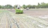 Thạnh Hóa: Sản xuất nông nghiệp ứng dụng công nghệ cao là hướng đi tất yếu