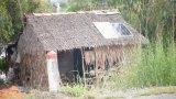 Mộc Hóa: Ấp 7, xã Tân Lập 'khát' điện, nước và cầu qua kênh 79