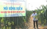 Để phát triển nông nghiệp sạch bền vững