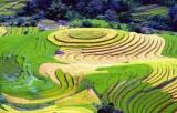 Việt Nam - Điểm đến ấn tượng tại Hội chợ Du lịch quốc tế Montreal