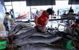 Xuất khẩu nông, lâm, thủy sản 10 tháng đạt hơn 33 tỉ USD