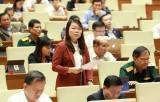 Cho ý kiến dự án Luật Dân quân tự vệ (sửa đổi) và Luật Xuất cảnh, nhập