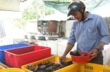 Cửa hàng hải sản Sang Duyên: Hướng đến sản phẩm sạch để phục vụ khách hàng