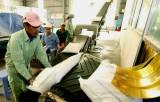 Xuất khẩu gạo trên thế giới sụt giảm trước những khó khăn