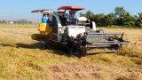 Năm 2020, ngành Nông nghiệp phấn đấu tốc độ tăng trưởng đạt 1,5%