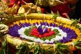 Du khách thưởng thức hàng chục loại bánh tại Lễ hội dừa Bến Tre