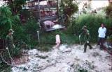 Long An: Bắt và tiêu hủy heo nhập lậu từ Campuchia