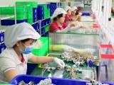 Long An: Doanh nghiệp trong khu công nghiệp tăng trưởng kim ngạch xuất, nhập khẩu