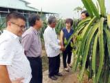 Châu Thành: Đoàn công tác Trung ương khảo sát kết quả xây dựng nông thôn mới