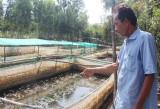 Bỏ phố về quê làm nông nghiệp sạch