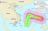 Cung cấp các bản tin dự báo, cảnh báo kịp thời để ứng phó bão Kammuri