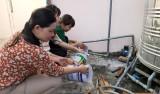 TP.Tân An chú trọng phòng, chống sốt xuất huyết trong trường học