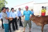 Nguyên Chủ tịch nước – Trương Tấn Sang trao bò cho hộ nghèo Đức Huệ