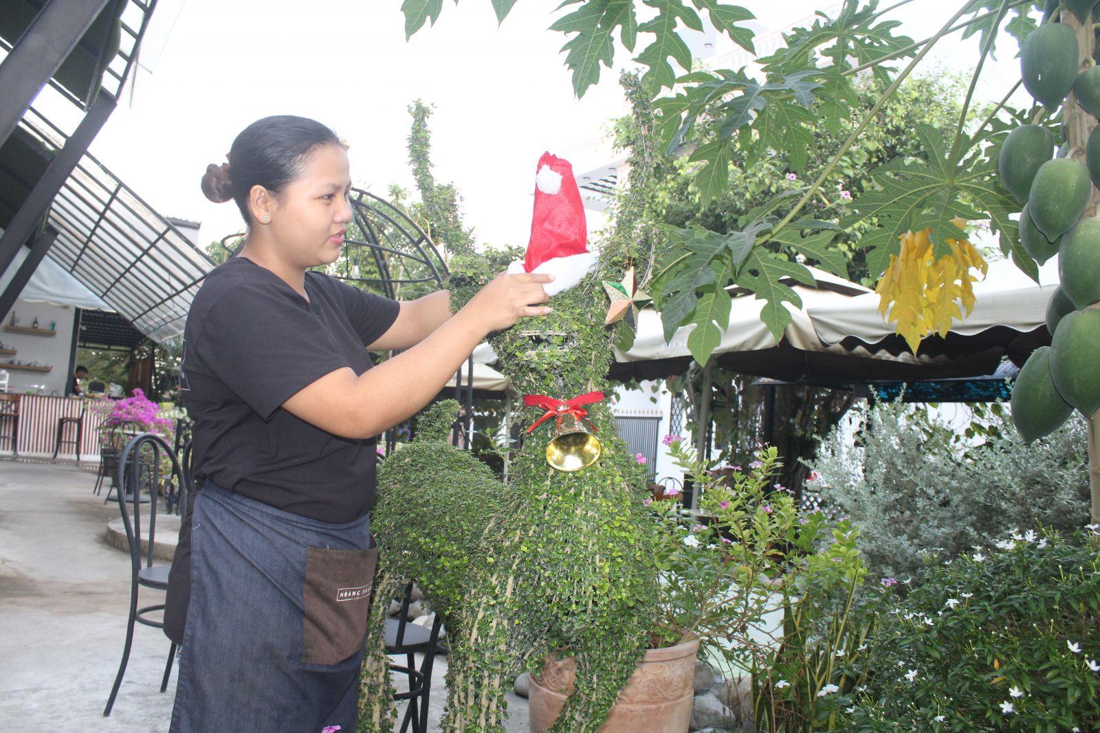 Con tuần lộc được quán cà phê Hoàng Phúc đầu tư theo kiểu bonsai