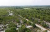Việt Nam thực hiện hiệu quả các điều ước ứng phó với biến đổi khí hậu