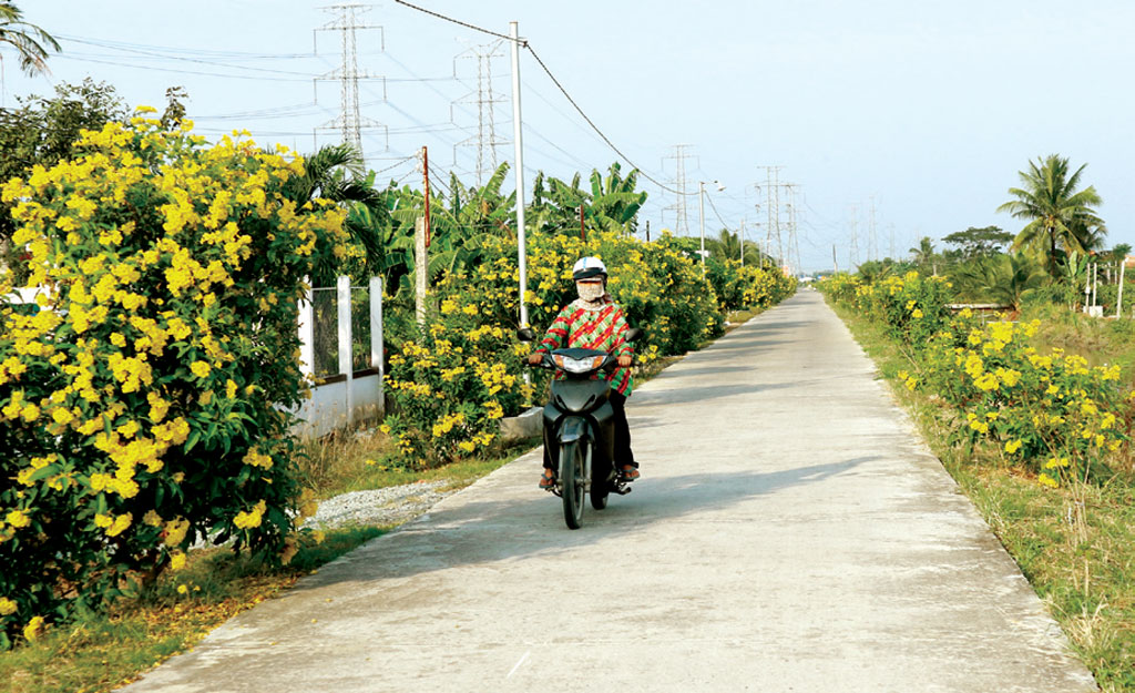 Concreted rural roads makes Chau Thanh countryside a new appearance