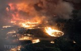 Australia điều thêm 3.000 binh sỹ ứng phó với thảm họa cháy rừng